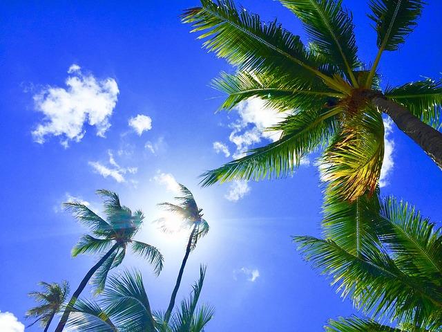 海外旅行に行きたいなら、今すぐ格安SIMにすべき!!