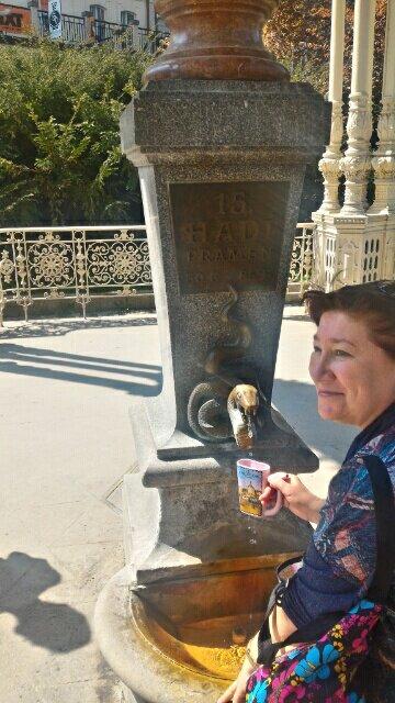 カルロビ・バリの温泉源