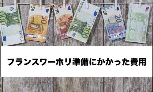 【フランスワーホリ】準備にかかった費用と安くする方法を公開!